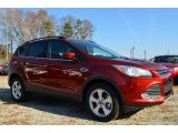 2014 Sunset Ford Escape SE 1.6L EcoBoost #88406619