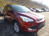 2014 Sunset Ford Escape SE 1.6L EcoBoost #88442841