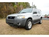 2006 Silver Metallic Ford Escape XLT V6 #88443213