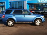 2009 Sport Blue Metallic Ford Escape XLT V6 #88531655