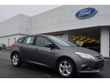 2014 Sterling Gray Ford Focus SE Hatchback #88531842