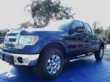 2014 Blue Jeans Ford F150 XLT SuperCab 4x4 #88576858
