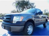 2014 Sterling Grey Ford F150 XL Regular Cab #88576845