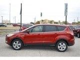 2014 Sunset Ford Escape SE 1.6L EcoBoost #88636652