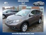 2014 Urban Titanium Metallic Honda CR-V EX-L AWD #88666943