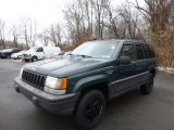 1995 Moss Green Pearl Jeep Grand Cherokee SE 4x4 #88666985