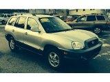 2004 Pewter Hyundai Santa Fe GLS 4WD #88667067