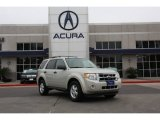 2009 Light Sage Metallic Ford Escape XLT #88666887