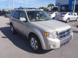 2009 Light Sage Metallic Ford Escape Limited #88693448