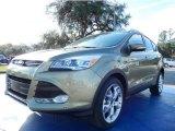 2014 Ginger Ale Ford Escape Titanium 2.0L EcoBoost #88693054