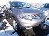 2011 Platinum Graphite Nissan Murano LE AWD #88725013