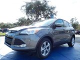 2014 Sterling Gray Ford Escape SE 2.0L EcoBoost #88724612