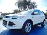 2014 White Platinum Ford Escape Titanium 1.6L EcoBoost #88724611