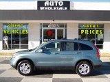 2010 Opal Sage Metallic Honda CR-V EX-L AWD #88724892