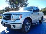 2014 Ingot Silver Ford F150 XL Regular Cab #88818095