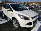 2014 White Platinum Ford Escape Titanium 2.0L EcoBoost 4WD #88818148