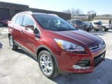 2014 Sunset Ford Escape Titanium 2.0L EcoBoost 4WD #88818147