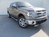 2014 Sterling Grey Ford F150 XLT SuperCrew 4x4 #88818323