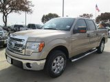 2013 Pale Adobe Metallic Ford F150 XLT SuperCrew #88865887