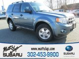 2010 Steel Blue Metallic Ford Escape XLT V6 #88891892