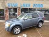 2010 Steel Blue Metallic Ford Escape Limited V6 4WD #88891968