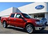 2014 Sunset Ford F150 XLT SuperCrew #88891816