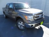 2014 Sterling Grey Ford F150 XLT SuperCrew #88920547