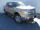 2013 Pale Adobe Metallic Ford F150 XLT SuperCrew 4x4 #88920532