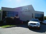 2008 Platinum Metallic Buick Enclave CXL AWD #88960261