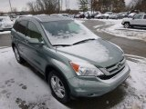2011 Opal Sage Metallic Honda CR-V EX-L 4WD #88960526