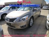 2013 Java Metallic Nissan Altima 2.5 SV #89007152