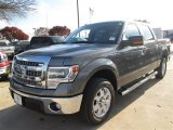 2014 Sterling Grey Ford F150 XLT SuperCrew #89051772