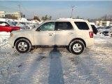 2010 Ford Escape Oxford White