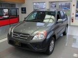2006 Silver Moss Metallic Honda CR-V EX 4WD #89120463