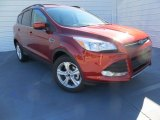 2014 Sunset Ford Escape SE 1.6L EcoBoost #89140970