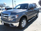 2014 Sterling Grey Ford F150 XLT SuperCrew #89161184
