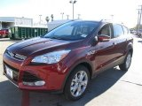 2014 Sunset Ford Escape Titanium 2.0L EcoBoost #89161178