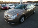 Hyundai Sonata 2014 Data, Info and Specs