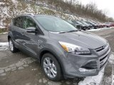 2014 Sterling Gray Ford Escape Titanium 2.0L EcoBoost 4WD #89199823