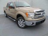 2014 Pale Adobe Ford F150 XLT SuperCrew #89199961