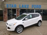 2014 White Platinum Ford Escape Titanium 2.0L EcoBoost 4WD #89274949