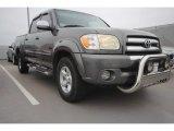 2005 Phantom Gray Pearl Toyota Tundra SR5 Double Cab #89336688