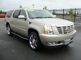 2007 Gold Mist Cadillac Escalade ESV AWD #8919730