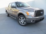 2014 Sterling Grey Ford F150 STX SuperCrew #89351106