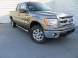 2014 Sterling Grey Ford F150 XLT SuperCab 4x4 #89351105