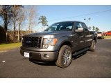 2014 Sterling Grey Ford F150 STX SuperCab #89381843