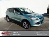 2013 Frosted Glass Metallic Ford Escape SEL 1.6L EcoBoost #89459070