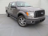 2014 Sterling Grey Ford F150 STX SuperCrew #89483870