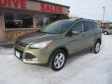 2013 Ginger Ale Metallic Ford Escape SE 2.0L EcoBoost 4WD #89518854