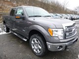 2014 Sterling Grey Ford F150 XLT SuperCrew 4x4 #89566749